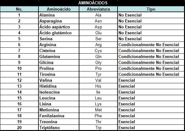 Lista de aminoácidos y su clasificaci´oon