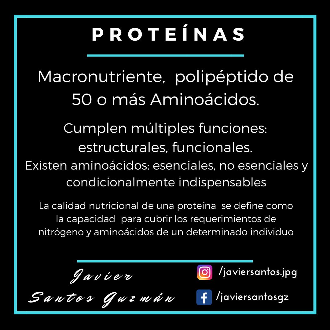 Proteínas resumen breve de puntos clave