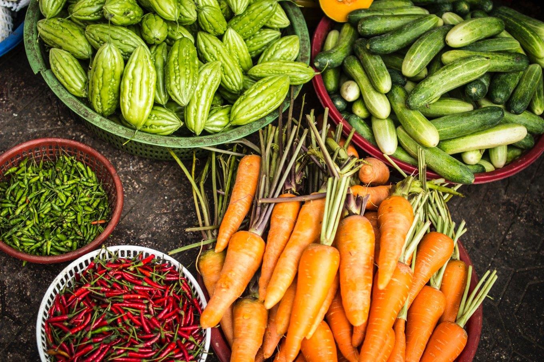 Figura 1. Alimentos ricos en vitaminas